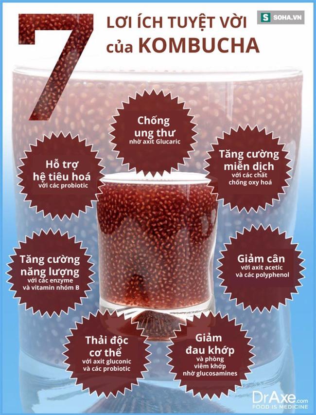 Kombucha: Loại trà bất tử được chuyên gia khuyên dùng mỗi ngày - Ảnh 1.