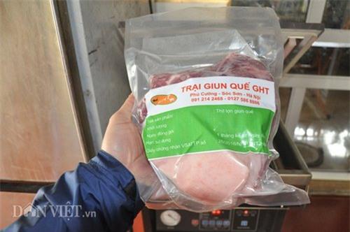 lợn nghe nhạc, lợn giun quế, Hà Nội, nuôi lợn, thịt lợn sạch, thịt lợn,