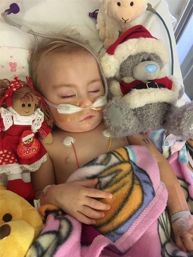 Bé gái sơ sinh được cứu sống từ tay tử thần nhờ hành động kì lạ của chị gái - Ảnh 5.
