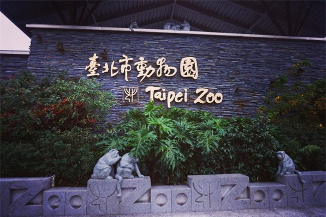4 ngày 3 đêm vi vu Đài Loan hết công suất chỉ mất 7 triệu đồng - Ảnh 17.