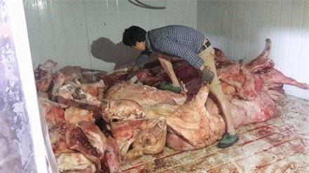 thịt thối, 'lợn hun khói, Cao Bằng, lợn chết, thịt lợn