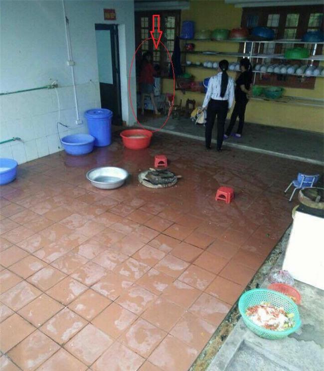 Các cô giáo lên tiếng về việc dọa cắm điện, bế ngược học sinh thả vào máy vặt lông gà - Ảnh 1.