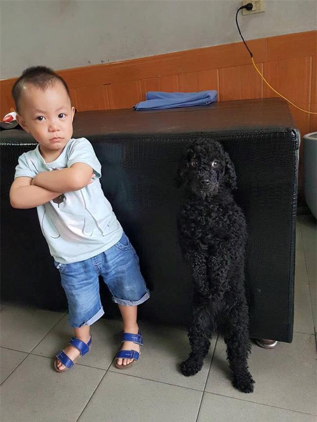 Bức ảnh về tình chị em của cô chó 3 tuổi và cậu nhóc 2 tuổi đốn tim dân mạng - Ảnh 1.