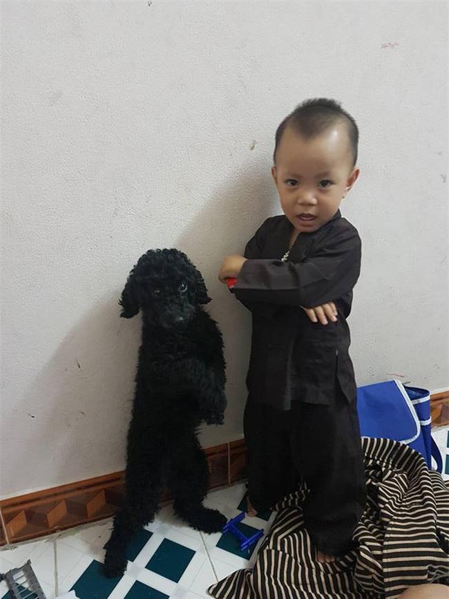 Bức ảnh về tình chị em của cô chó 3 tuổi và cậu nhóc 2 tuổi đốn tim dân mạng - Ảnh 5.