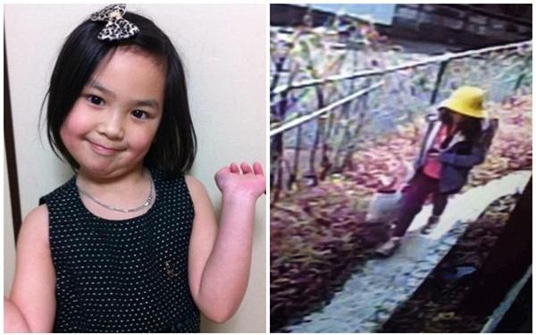 Xuất hiện chiếc ô tô nghi theo dõi bé gái người Việt vừa mất tích và tử vong tại Nhật Bản - Ảnh 3.