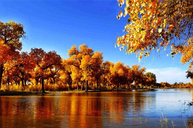 Cảnh đẹp như tranh vẽ của thảo nguyên Tân Cương - Ảnh 21.