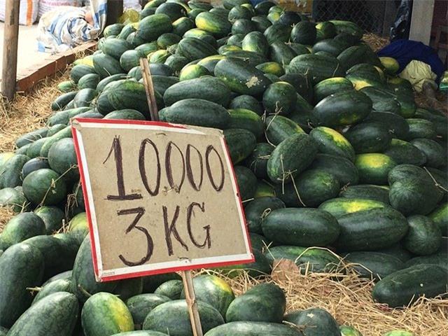 dưa hấu, nông sản việt, dưa hấu nhật, dưa hấu việt, hoa quả nhập ngoại, dưa hấu việt ế ẩm, dưa hấu rẻ như cho