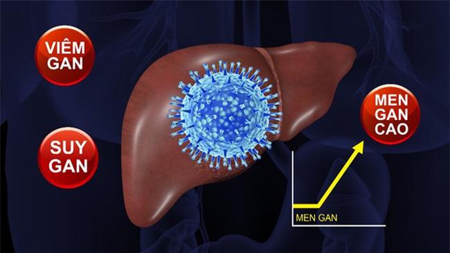 Bảo bối thải độc và phòng chữa bệnh gan được Đông y khen là món quà trời ban - Ảnh 1.