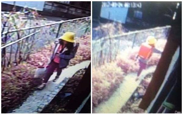 Nhật Bản: Cảnh sát nghi ngờ một người đàn ông đi theo sau bé gái Việt vào thời điểm mất tích - Ảnh 1.