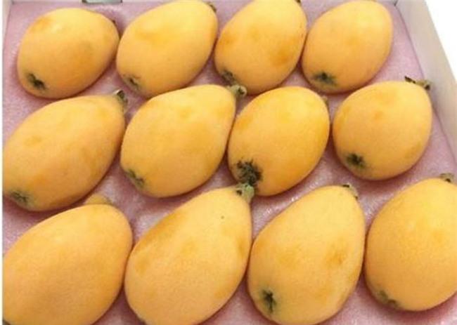 quả lạ, hoa quả nhập ngoại, hoa quả nhật bản, hoa quả nhập khẩu