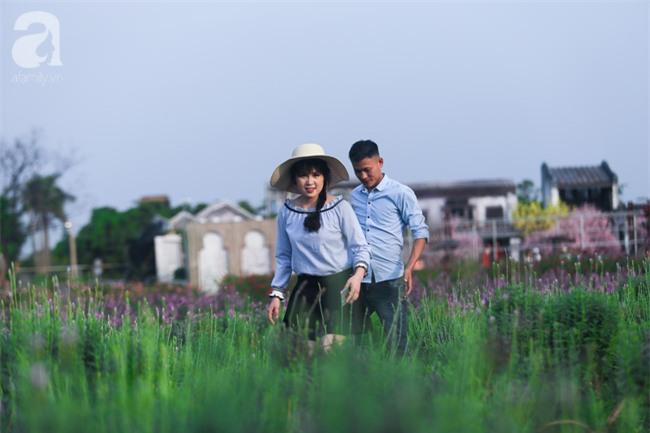 Không cần đi Tây, ở ngay Hà Nội cũng có vườn lavender tím rực khiến chị em ngất ngây - Ảnh 5.