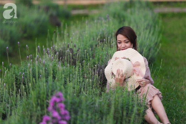 Không cần đi Tây, ở ngay Hà Nội cũng có vườn lavender tím rực khiến chị em ngất ngây - Ảnh 6.