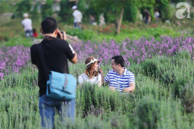 Không cần đi Tây, ở ngay Hà Nội cũng có vườn lavender tím rực khiến chị em ngất ngây - Ảnh 7.