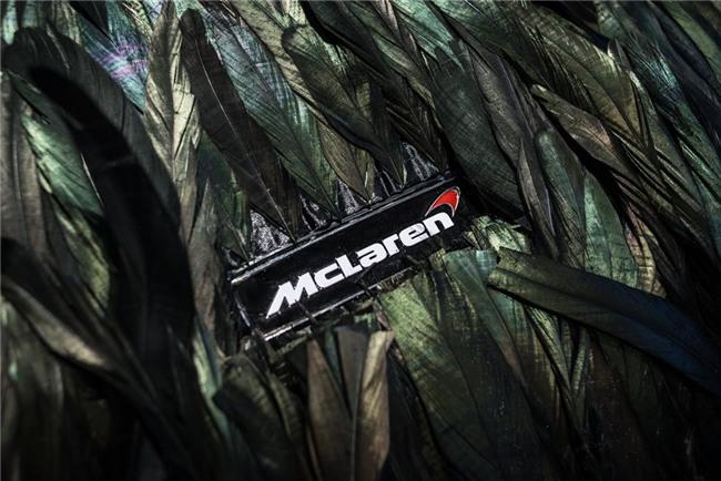 Sieu xe McLaren 570GT than phu long vu hinh anh 3