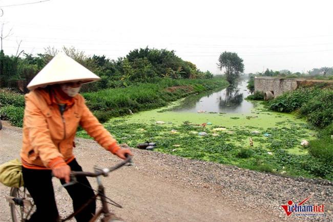 Hà Nội: Tưới rau sống bằng nước thải đen ngòm - Ảnh 5.