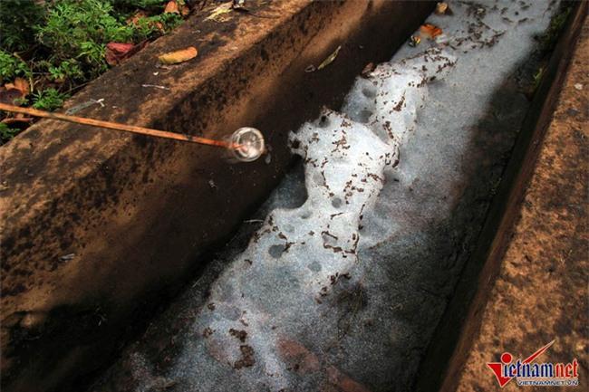 Hà Nội: Tưới rau sống bằng nước thải đen ngòm - Ảnh 9.