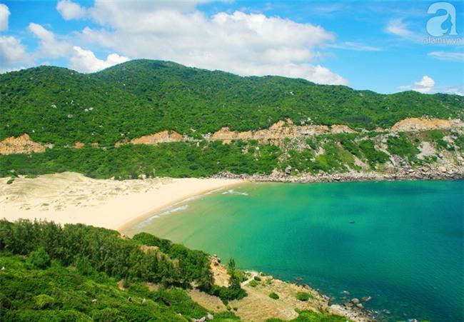 Trong 4 ngày đi trọn Phú Yên, Bình Định theo lịch trình từ A đến Z, cực dễ áp dụng - Ảnh 10.