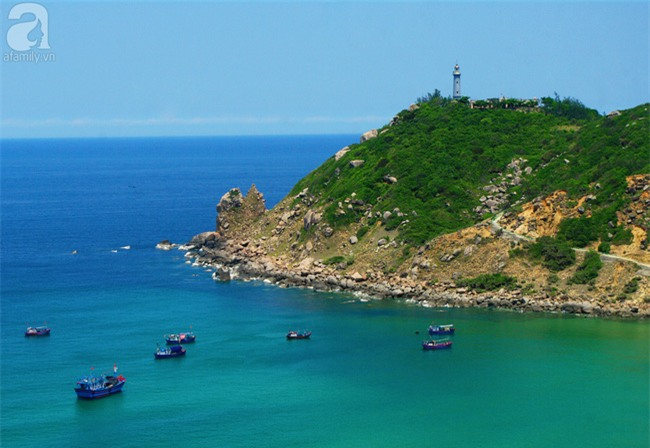 Trong 4 ngày đi trọn Phú Yên, Bình Định theo lịch trình từ A đến Z, cực dễ áp dụng - Ảnh 11.