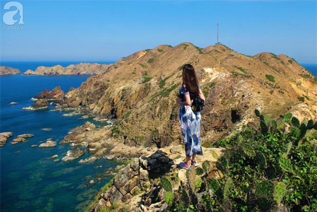 Trong 4 ngày đi trọn Phú Yên, Bình Định theo lịch trình từ A đến Z, cực dễ áp dụng - Ảnh 15.
