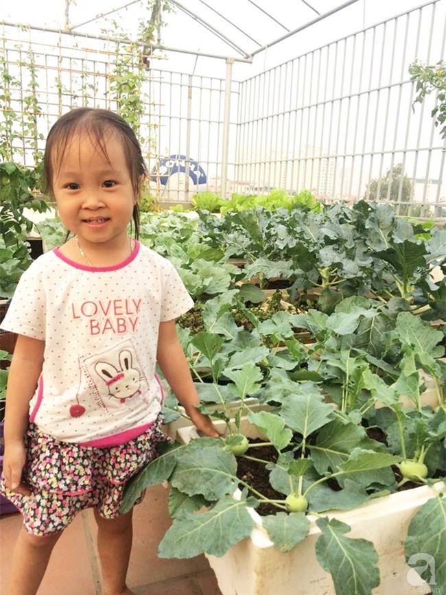 Đầu tư 30 triệu, ông bố 2 con sở hữu vườn rau trên sân thượng tươi đẹp bất ngờ giữa lòng thủ đô - Ảnh 15.