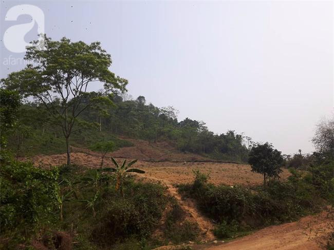 Hòa Bình: Nghi án cô giáo mầm non bị hãm hiếp rồi sát hại, thi thể vứt giữa rừng - Ảnh 2.