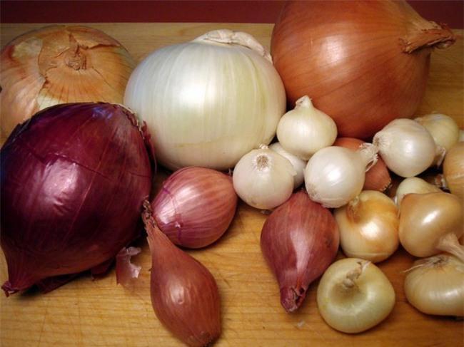 5 loại thực phẩm tốt nhất cho gan: Người muốn dưỡng gan chữa bệnh nên ăn thường xuyên - Ảnh 4.
