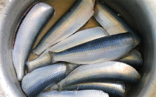 Cá mua về chưa dùng ngay thì phải nhớ những mẹo của ông bà xưa để cá tươi roi rói - Ảnh 1.
