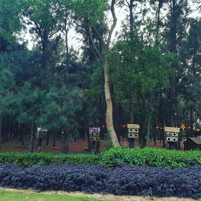 5 resort hội tụ đủ yếu tố đẹp, gần, dễ đi, giá hợp lý cho chuyến du lịch 30/4 gần Hà Nội - Ảnh 28.