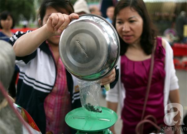 2 ngàn đồng/hạt gia vị, gần 1 triệu đồng/kg tỏi vẫn khiến hàng trăm người dân Hà Nội lùng mua - Ảnh 5.
