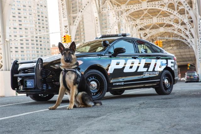 Ford trình làng mẫu Fusion Hybrid phiên bản dành cho cảnh sát cực ngầu