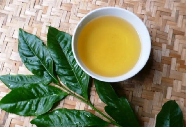 Trong trà xanh có chất chống oxy hóa ngăn tình trạng lão hóa da