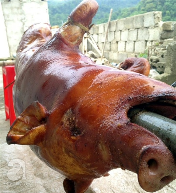 Người dân khắp nơi khoe ảnh giải cứu lợn cho người nông dân - Ảnh 13.