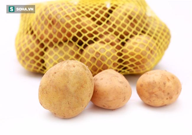 Rất nhiều bà nội trợ đang bảo quản khoai tây sai cách khiến chúng sinh ra chất gây ung thư - Ảnh 1.