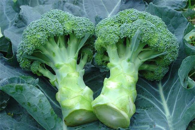 8 loại thực phẩm có tác dụng thải độc tốt nhất: Bạn nên biết sớm để ăn hợp lý - Ảnh 8.