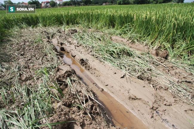 Hiện trường vụ tai nạn khiến 3 học sinh tử vong Bắc Ninh - Ảnh 8.