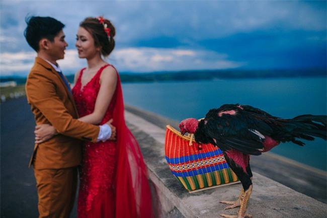 Người thứ ba trong ảnh cưới của cặp đôi Phú Yên khiến dân mạng bấm like nhiệt tình - Ảnh 2.