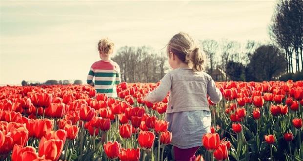 Mẹ Anh và mẹ Mỹ tiết lộ lý do trẻ em Hà Lan luôn hạnh phúc nhất thế giới - Ảnh 3.