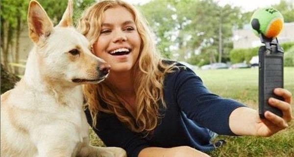 Nghiên cứu mới phát hiện khả năng đặc biệt của loài chó - 2