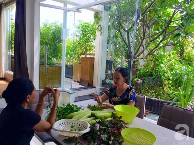 Khu vườn trên sân thượng rộng tới 200m² bạt ngàn rau quả sạch của nữ doanh nhân Sài Thành - Ảnh 10.
