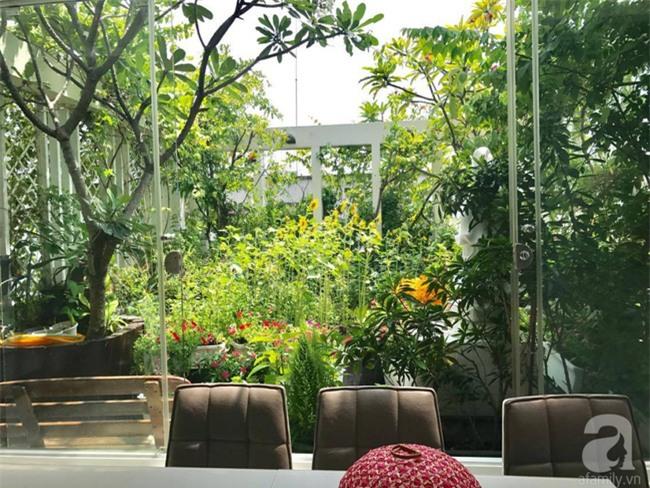 Khu vườn trên sân thượng rộng tới 200m² bạt ngàn rau quả sạch của nữ doanh nhân Sài Thành - Ảnh 7.
