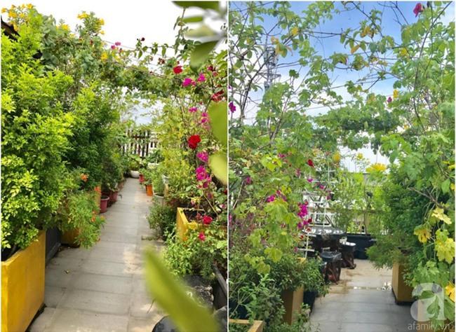Khu vườn trên sân thượng rộng tới 200m² bạt ngàn rau quả sạch của nữ doanh nhân Sài Thành - Ảnh 8.