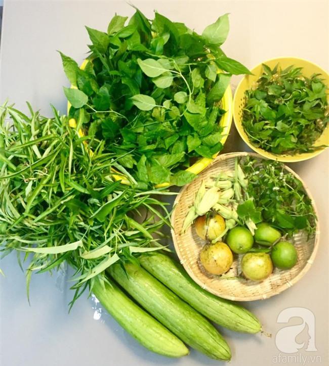 Khu vườn trên sân thượng rộng tới 200m² bạt ngàn rau quả sạch của nữ doanh nhân Sài Thành - Ảnh 28.