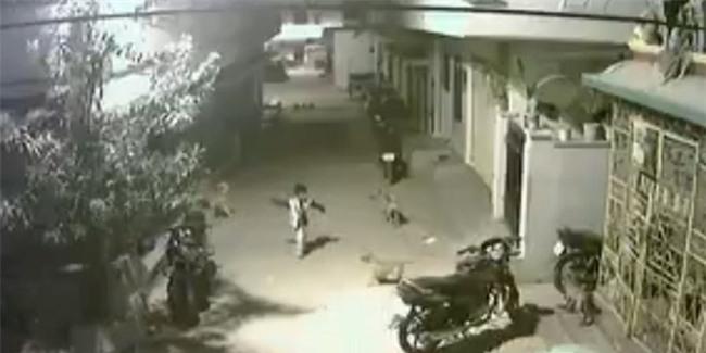 Gọi hội bắt nạt thanh niên cứng 5 tuổi bất thành, đàn chó dữ đành cụp đuôi bỏ về - Ảnh 2.