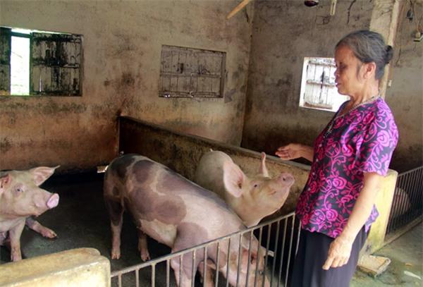 Hà Nội: Gặp người phụ nữ bị tiểu thương chợ Tân Lập đòi ném thịt lợn xuống ao - Ảnh 2.