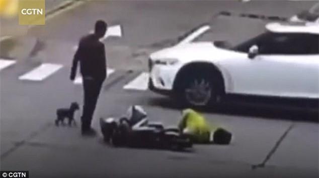 Chủ bị đụng xe, chó chạy theo chặn đầu ô tô gây tai nạn rồi đứng chờ cho tài xế xuống xe mới thôi - Ảnh 3.