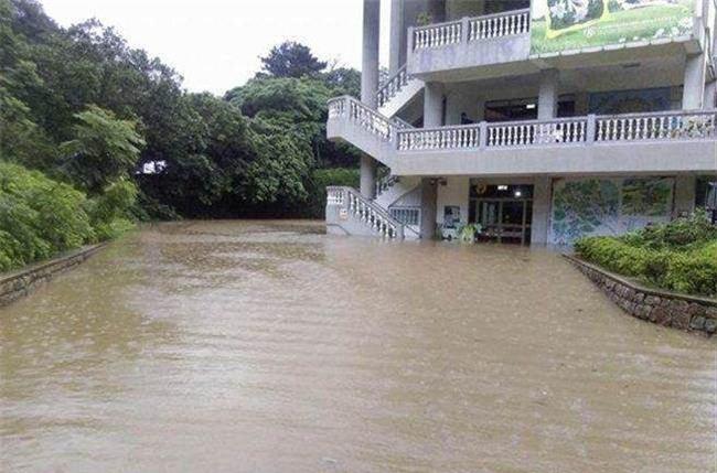 Người dân Đài Loan chật vật đối mặt với ngập úng khắp nơi bởi trận mưa lớn kỷ lục trong 17 năm qua - Ảnh 7.