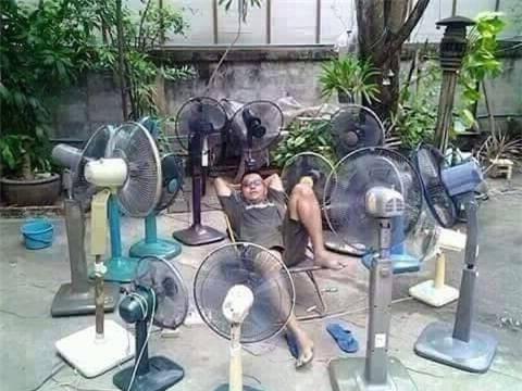 Nghìn lẻ một kiểu tránh nóng giữa những ngày nắng kỉ lục - Ảnh 10.