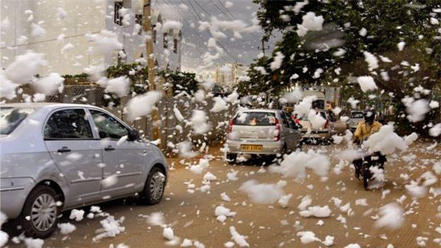 Sau cơn mưa lớn, thành phố bị bao phủ bởi tuyết nhưng ai cũng sốc khi biết sự thật - Ảnh 2.