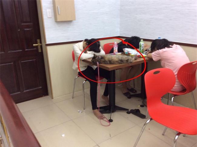 Ngao ngán cảnh sinh viên ôm chăn gối theo để ngủ, xả rác bừa bãi trong các cửa hàng tiện lợi - Ảnh 2.