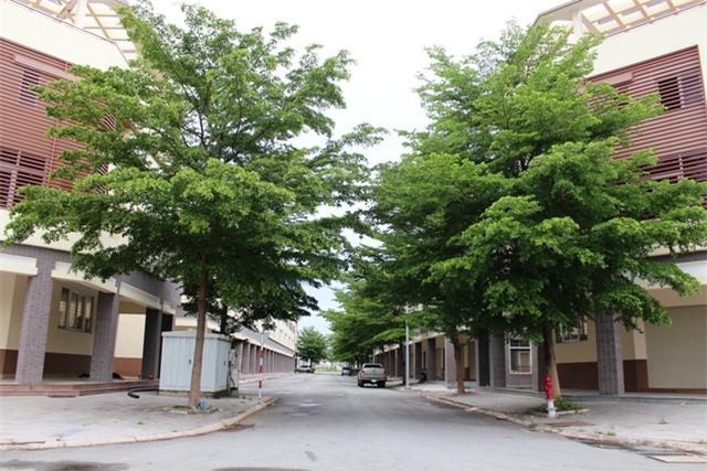 Cả khu nhà phố xây sẵn nhưng chỉ có vài nhà có người ở.